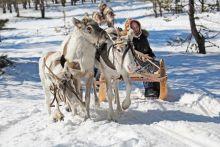 b_220_0_16777215_00_images_news_2012_novoagansk.jpg